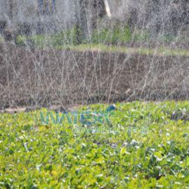 Шланг для полива Лента Туман Golden spray 1д 1/4 (60мм) 10mill 100 метров